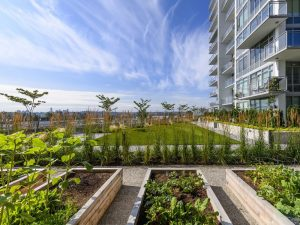 Master-planned communities: How outdoor spaces enhance livability