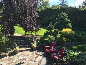 Betsy's Vancouver Garden - FineGardening