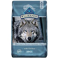 the-best-dry-dog-food-canines-could-eat-forever-2020-review
