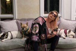lady-gaga-offers-500000-reward-after-thieves-shoot-her-dogwalker-and-snatch-2-of-her-pups