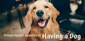 Proven Health Benefits of Having a Dog (As If Cuteness Wasn't Enough)