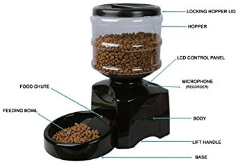 top-12-best-automatic-cat-feeders-for-single-and-multi-pet-homes-2020