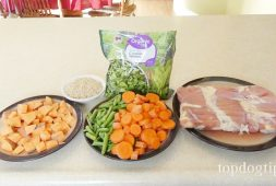 slow-cooker-chicken-rice-and-veggie-meal-top-dog-tips