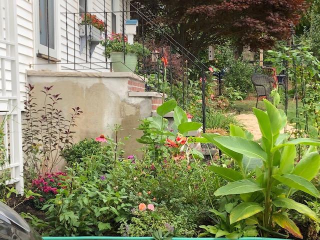 joans-new-garden-finegardening