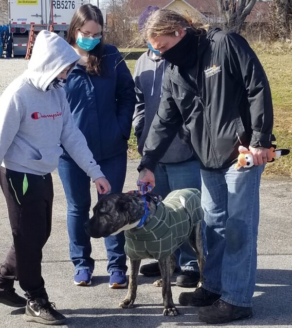 malnourished-dog-doubles-his-weight-and-reunites-with-his-11-year-old-rescuer