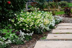 spring-border-design-for-the-northwest