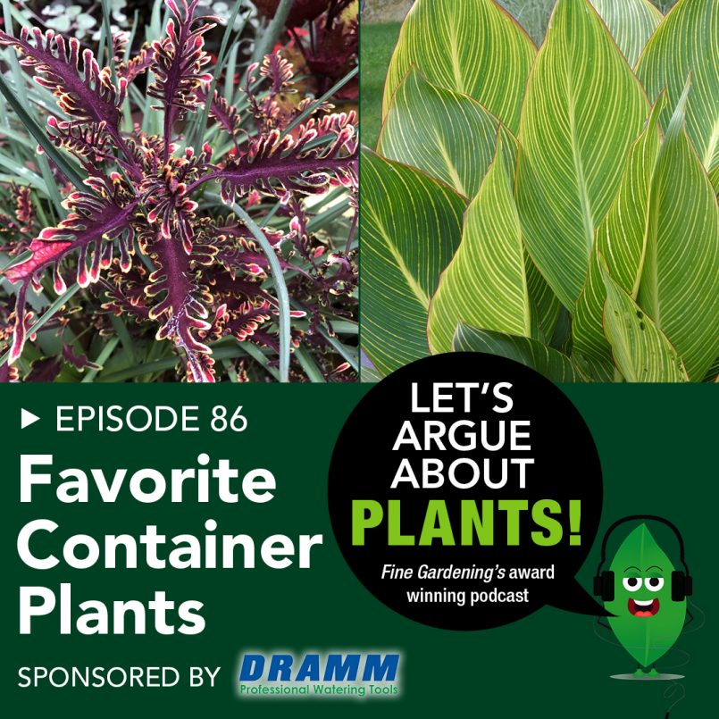 episode-86-favorite-container-plants