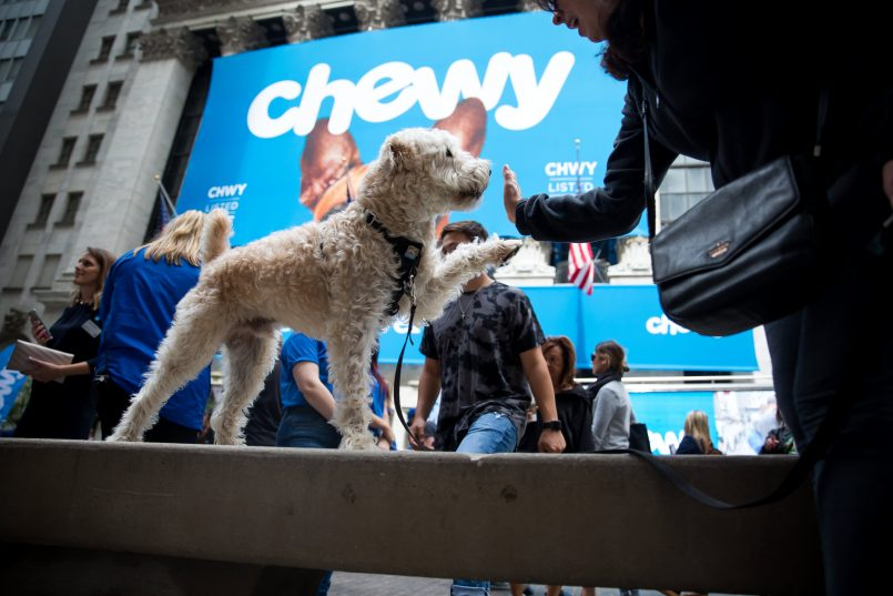 chewy-dave-busters-vertex-pharmaceuticals-and-more
