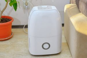 9 Best Dehumidifiers for Every Budget 2021