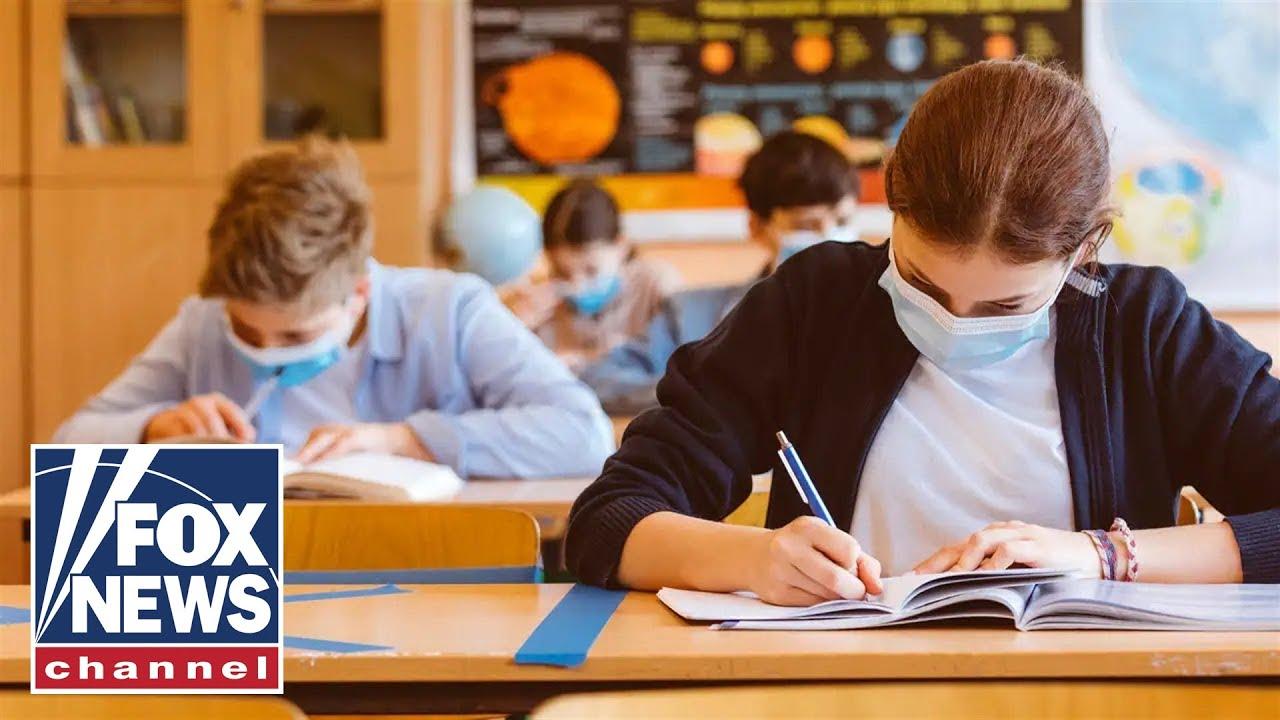 woke-culture-is-infecting-schools-says-author-of-woke-inc